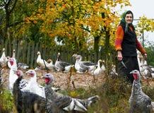在村庄种田鸭子和火鸡,站立与刀子的老妇人 免版税库存照片