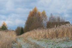 在村庄路的第一雪在领域 免版税库存图片
