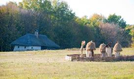 在村庄附近的老蜂房 免版税图库摄影