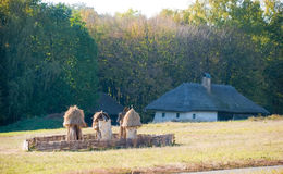 在村庄附近的老蜂房 免版税库存照片