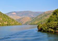 在杜罗河河的风景 免版税图库摄影