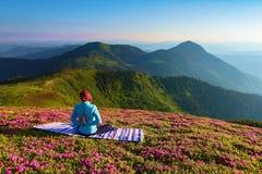 在杜鹃花花中的草坪瑜伽女孩在姿势坐五颜六色的地毯 凝思 放松 库存图片