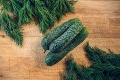 在束的三个黄瓜在切板的莳萝之间 库存照片