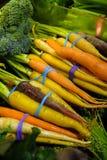 在束的红萝卜品种在农夫` s市场上 库存照片