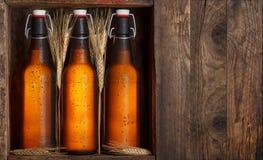 在条板箱的啤酒瓶 库存图片