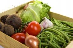 在条板箱的季节性菜 库存照片