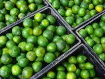 在条板箱的绿色柑橘水果 免版税库存照片