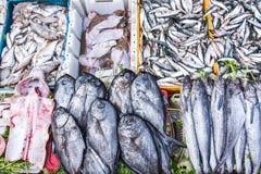 在条板箱的Freesh鱼在地方食物市场上在非洲 免版税库存照片