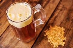 在杯上看法啤酒用在基地的麦子在一张木桌上在木背景中 库存图片