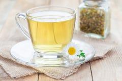 在杯子、春黄菊花和干茶的甘菊茶在背景,水平 图库摄影