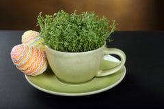 在杯子和复活节彩蛋的水芹 免版税图库摄影