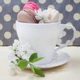 在杯子的三个不同甜和五颜六色的法国蛋白杏仁饼干和 图库摄影