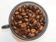 在杯子的咖啡豆在白色背景 免版税图库摄影