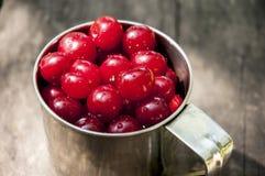 在杯子的成熟樱桃 库存图片