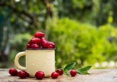 在杯子的新鲜的甜cornel莓果 乡村模式 季节性莓果 免版税库存图片