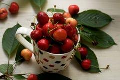 在杯子的樱桃,新鲜和水多,快餐 库存照片