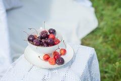 在杯子的樱桃 图库摄影
