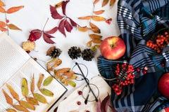 在杯子的热的咖啡有格子花呢披肩或围巾的,有耳机的手机,葡萄酒桌表面上的秋天叶子,有选择性 免版税图库摄影