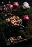 在杯子的蜂蜜伞菌 与秋天12月的土气静物画食物 免版税库存照片