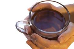 在杯子茶之上 库存图片