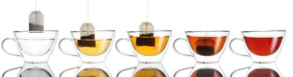 在杯子集合的茶袋 库存图片