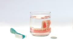 在杯的假牙与刷子和擦净剂的水 免版税库存图片
