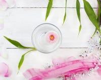 在杯的桃红色雏菊花与竹子和装饰的水 库存图片