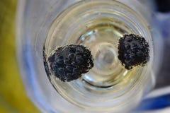 在杯的蓝莓香槟 图库摄影