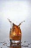 在杯的飞溅苏格兰威士忌酒 免版税库存图片