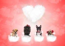 在松的云彩的狗与大心脏在背景中 免版税库存图片