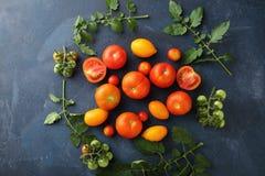 在板岩的新鲜和成熟蕃茄 库存图片