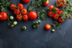 在板岩的新鲜的红色蕃茄 免版税库存图片