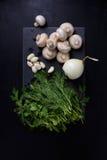 在板岩的年轻春天菜上,黑背景 蘑菇,大蒜,莳萝 平的位置 库存图片