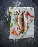 在板料的两条小的新鲜的河鱼  免版税库存照片