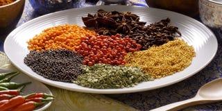 在板材在印度,五谷,辣种子的Spicies 免版税库存照片