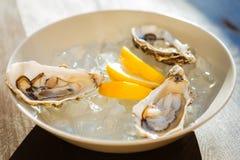 在板材的三只小的新鲜的牡蛎在柠檬附近 免版税图库摄影