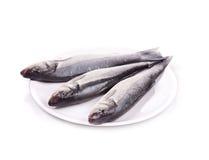 在板材的三条新鲜的雪鱼鱼 库存图片