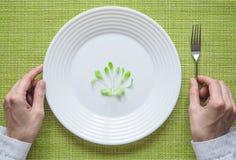 在板材的年轻沙拉 饮食的幽默概念 图库摄影