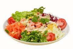 在板材的新鲜的健康经典凯萨色拉用在白色背景的虾 库存照片