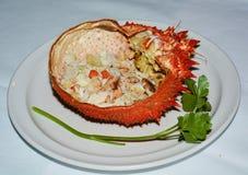 在板材的橙色螃蟹鱼 免版税库存照片