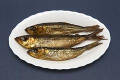 在板材的烟熏鲱鱼 库存照片