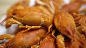 在板材的煮沸的小龙虾在桌hd 股票视频
