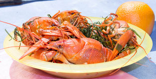 在板材的煮沸的小龙虾 免版税库存图片