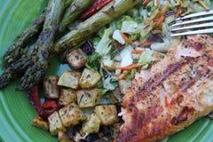 在板材的特写镜头烤了菜和三文鱼内圆角芦笋和葱土豆 免版税库存照片