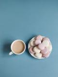 在板材的甜软的蛋白杏仁饼干 库存图片