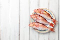 在板材的红鲻鱼鱼 免版税库存照片