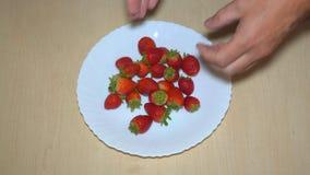 在板材的草莓莓果 影视素材