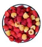在板材的莓 免版税库存照片