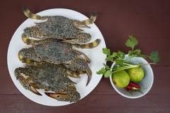 在板材的螃蟹海鲜和草本,在木bac的特写镜头香料 免版税库存图片