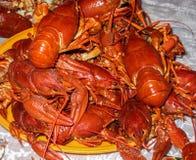 在板材的许多煮熟的小龙虾 河熟食 库存照片